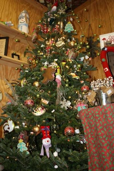 - Guse Christmas Trees - Christmas Photos